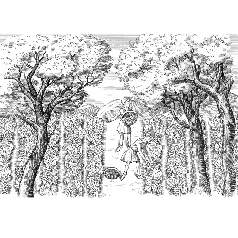 fred-van-deelen-illustrator-Black-and-white-illustration-scraperboard-engraving04