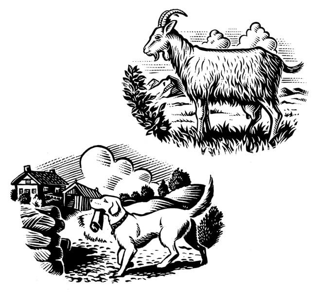 fred-van-deelen-scraperboard-illustration-10