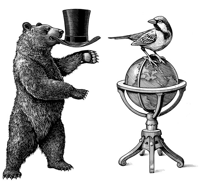fred-van-deelen-scraperboard-illustration-bear-and-bird